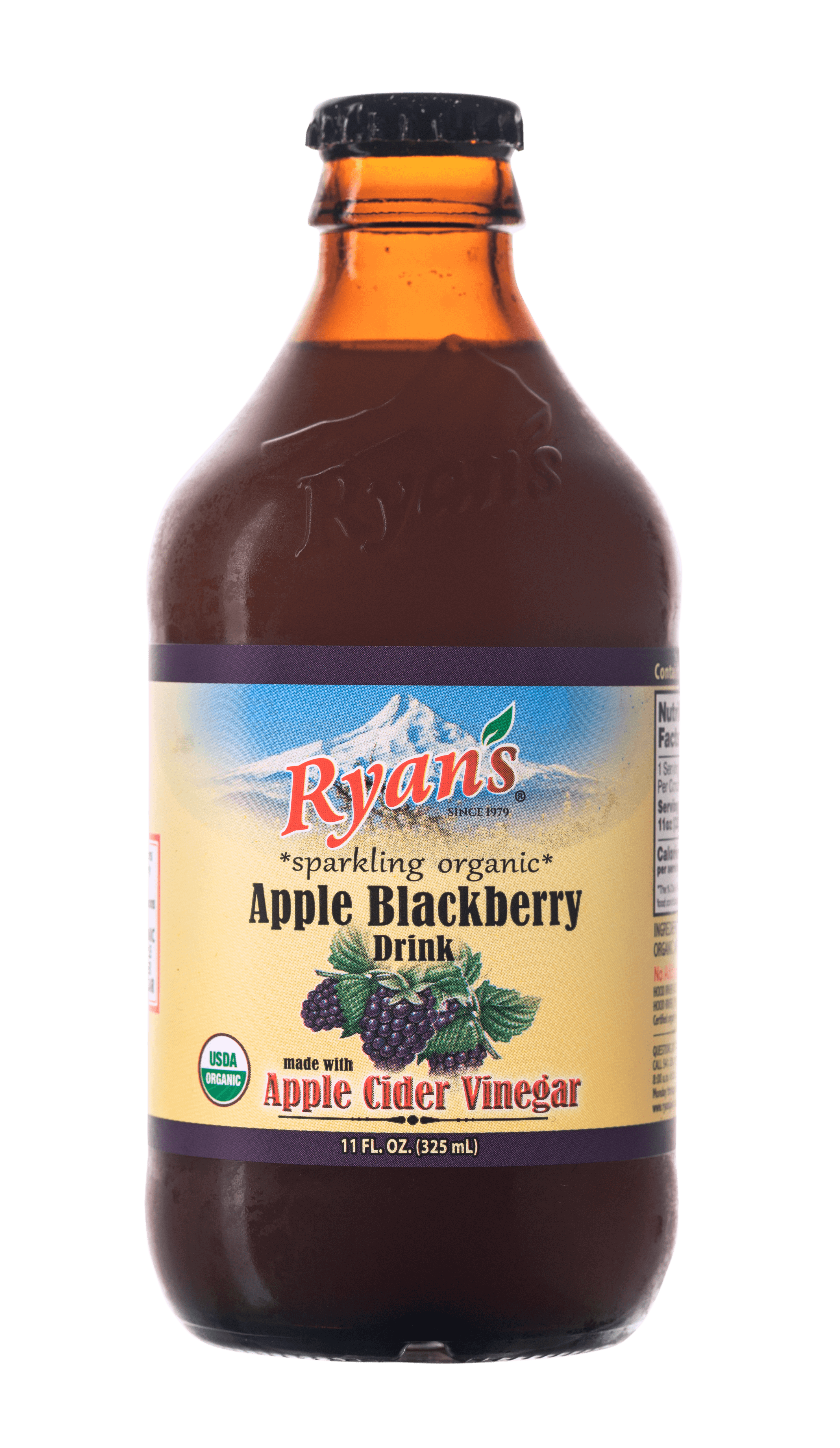 Ryan's Blackberry Sparkling Vinegar