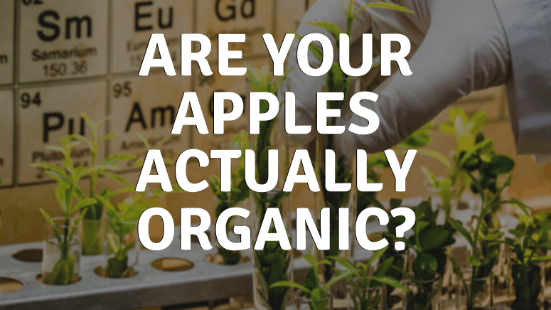 Are your apples actually organic? -Hand reaching into plant in test tube