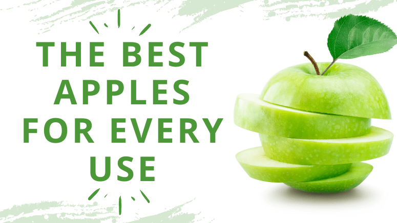 The best apples for every use cover photo
