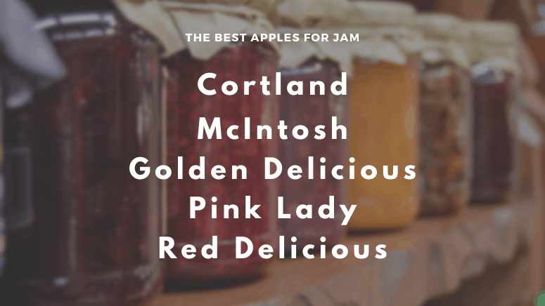 The best apples for jam